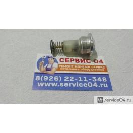 Пробка магнитная 9300-133 (3251-02.250